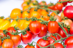 Группа томатов вишни на белой предпосылке Стоковые Фото