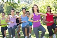 Группа фитнеса делая хи tai в парке Стоковое Изображение RF