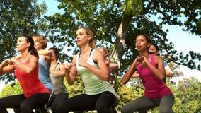 Группа фитнеса сидя на корточках в парке акции видеоматериалы