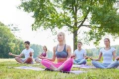 Группа людей размышляя в парке Стоковое Изображение RF