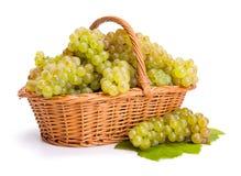Группы белой виноградины в корзине Стоковое Изображение RF