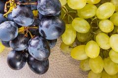 Группы голубых и белых виноградин на предпосылке пластичной доски с цыпками Стоковые Фотографии RF