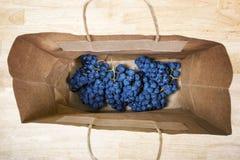 группы зрелых виноградин Стоковая Фотография RF