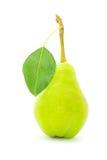 груша листьев стоковое фото