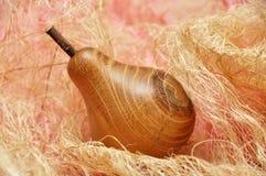 груша Стоковые Фото