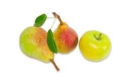 2 груша Bartlett и яблоко на светлой предпосылке Стоковые Изображения RF