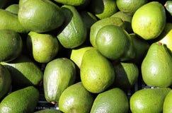груши авокадоа стоковые фотографии rf