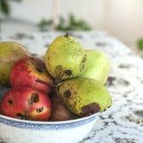 груши яблок органические Стоковое Фото
