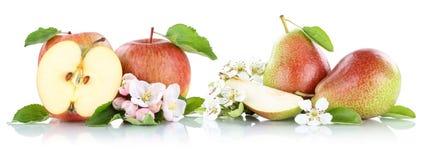 Груши яблок Яблока и груши приносить плодоовощами изолированными на белизне Стоковые Изображения