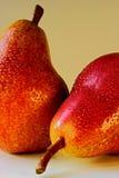 груши 2 Стоковые Фотографии RF