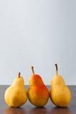 3 груши corella вертикальной Стоковые Фотографии RF