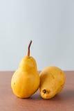 2 груши corella Стоковое Изображение