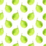 груши fruits pattern seamless рука нарисованная предпосылкой также вектор иллюстрации притяжки corel Стоковые Фотографии RF