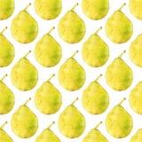 груши fruits pattern seamless рука нарисованная предпосылкой также вектор иллюстрации притяжки corel Бесплатная Иллюстрация