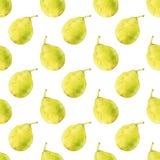 груши fruits pattern seamless рука нарисованная предпосылкой также вектор иллюстрации притяжки corel Иллюстрация вектора