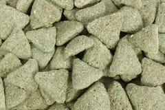 грызуны еды Стоковое Фото