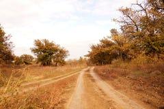 Грязная улица в степи Zavolzhye Стоковая Фотография