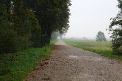 Грязная улица в тумане протягивает в расстояние, бортовое поле и лес Стоковое Изображение