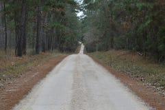 Грязная улица в лесе Стоковые Фотографии RF