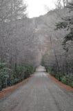 Грязная улица в Сан Мартине de los Андах Стоковые Фотографии RF