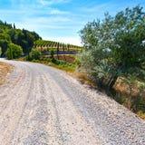 Грязная улица между виноградниками Стоковое Изображение