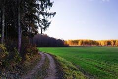 Грязная улица на краю зеленого поля на предпосылке th Стоковое фото RF