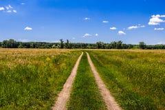 Грязная улица через зеленое поле Стоковое Изображение RF