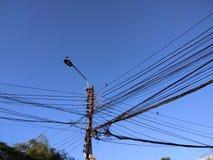 Грязные кабели и птицы Стоковая Фотография