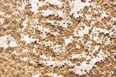 Грязные снег и лед плавят предпосылка текстуры стоковые изображения rf