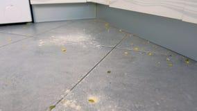 Грязный пол с остатками еды, мука кухни, хлопья мозоли после варить Взгляд конца-вверх сток-видео