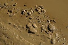 Грязь вышла на пол дома после того как поток реки Стоковая Фотография RF