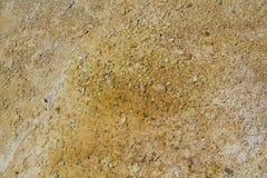 грязь детали Стоковая Фотография RF