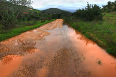 грязь затопила дорогу стоковое изображение rf