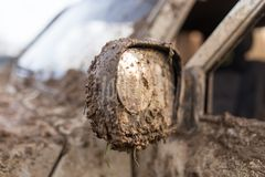 Грязь на зеркале автомобиля стоковая фотография