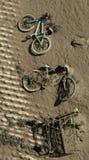 грязь Стоковая Фотография RF