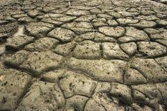 грязь Стоковые Фотографии RF