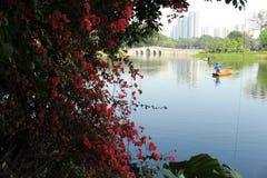 Гуанчжоу, hina ¡ Ð Стоковая Фотография RF