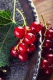губка красного цвета смородины торта Плита с сортированными ягодами лета, полениками, клубниками, вишнями, смородинами, крыжовник Стоковые Фото