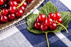 губка красного цвета смородины торта Плита с сортированными ягодами лета, полениками, клубниками, вишнями, смородинами, крыжовник Стоковая Фотография RF