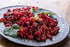 губка красного цвета смородины торта Плита с сортированными ягодами лета, полениками, клубниками, вишнями, смородинами, крыжовник Стоковые Фотографии RF