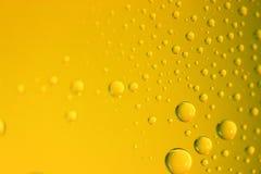 Губка на желтом поле стоковое изображение