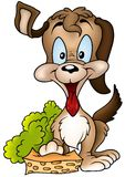 губка собаки стоковое фото rf