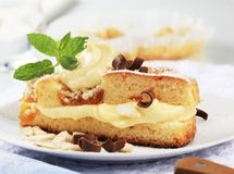 губка торта абрикоса Стоковые Фотографии RF