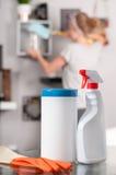 губки жидкости dishwashing принципиальной схемы чистки Чистка эконома женщины в комнате Стоковое фото RF