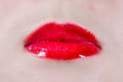 Губы женщины с губными помадами Стоковое Изображение