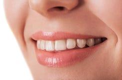 Губы и крупный план зуба красивейшей молодой женщины изолированные на whit Стоковые Фото