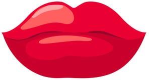 губы красные Стоковое Изображение