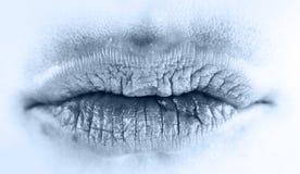 губы льда Стоковые Изображения