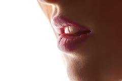 губы сексуальные Деталь состава губ красоты красная Красивый крупный план состава Чувственный открытый рот губная помада или Lipg Стоковые Изображения
