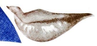губы иллюстрация вектора
